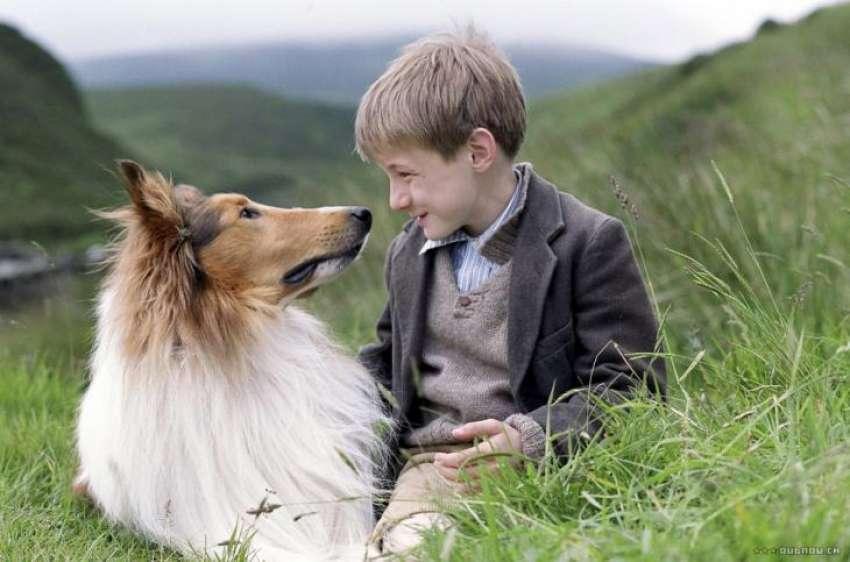 Η αληθινή ιστορία <br> της διάσημης σκυλίτσας <br> Λάσι (συγκινητικό βίντεο)